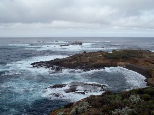 Point Lobos by Chris Parsons