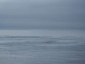 Foggy Monterey Bay by CM Parsons