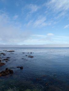 Celebrate Ocean by CM Parsons