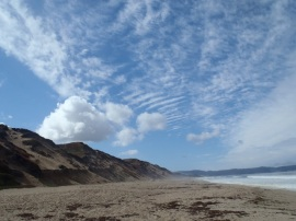 Fort Ord Dunes State Park