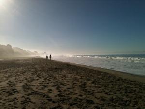 Manresa Beach 2012 by CM Parsons