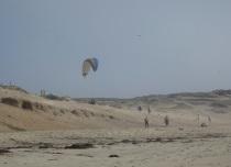 Marina State Beach
