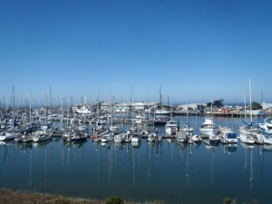 Moss Landing Harbor by CM Parsons