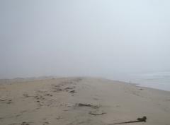 Salinas River Beach fog by CM Parsons