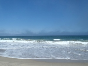 Fog at Salinas River State Beach