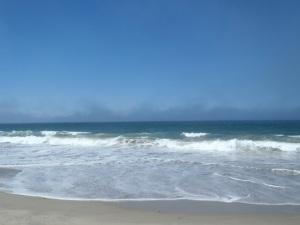 Fog at Salinas River State Beach