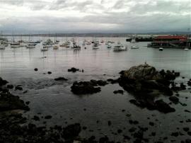 Harbor-Jan2013 by CMAParsons
